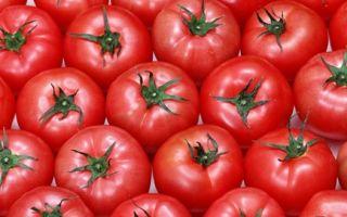 Польза от огурцов помидоров
