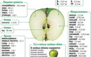 Яблоки лесные польза