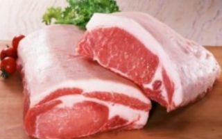 Шашлык из свинины вред и польза и вред