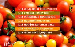 Хрен с помидорами польза