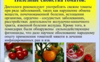 Польза м вред помидоров