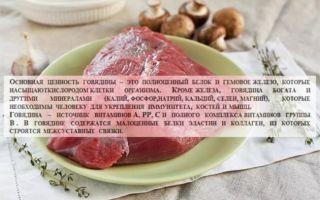Польза мяса баранины и говядины
