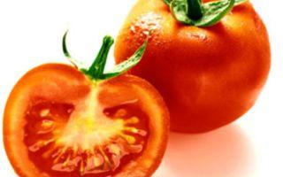 Польза помидор летом