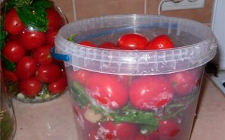 Стихи о пользе помидора