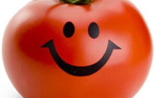 Польза оранжевых помидор