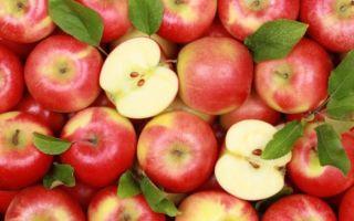 Польза яблок для мужчины