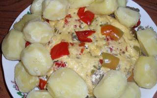 Мясо по рецепту любимого мужа