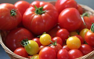Как пользу приносят помидоры