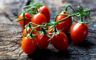 Омлет с помидорами польза